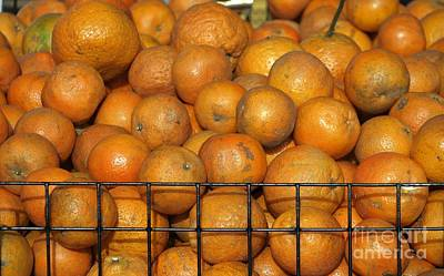 Fresh Natural Oranges For Sale Print by Yali Shi