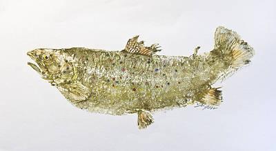 Freshwater Brown Trout Print by Nancy Gorr