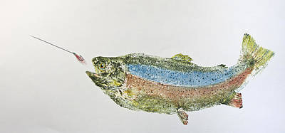 Rainbow Trout Mixed Media - Freshwater Rainbow Trout With Fly by Nancy Gorr