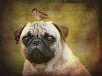 Friends Like Pug And Bird Print by Barbara Orenya