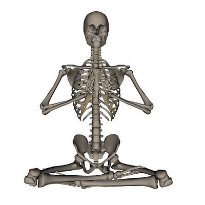 Human Skeleton Photograph - Front View Of Human Skeleton Meditation by Elena Duvernay