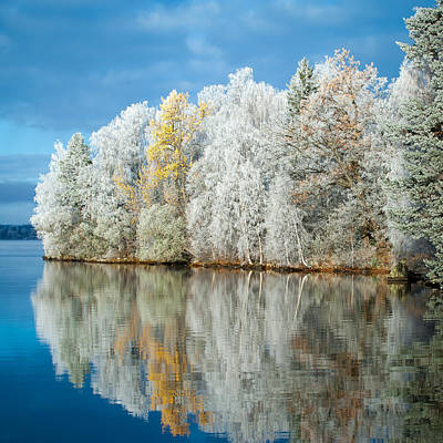 Lake Photograph - Frost And Reflections by Ari Salmela