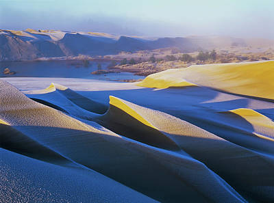 Oregon Dunes National Recreation Area Photograph - Frost And Sunlight Decorate The Sand by Robert L. Potts