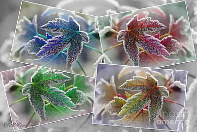 Frosted Maple Leaves Pop Art Shades Print by J McCombie