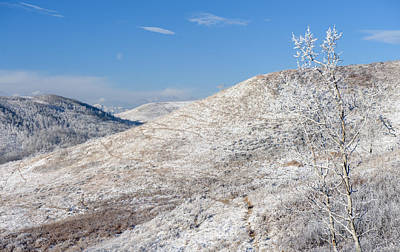 Frosty Foothills Print by Heather Simonds