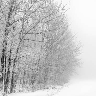 Frosty Forest Frontier Print by Chris Bordeleau