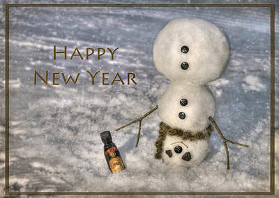 Snowy Digital Art - Frosty Happy New Year by Lori Deiter
