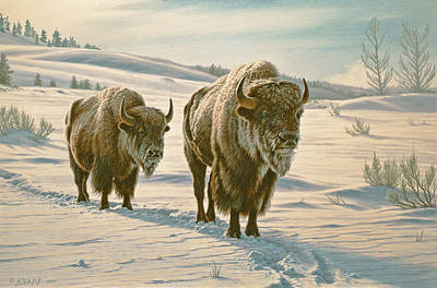 Yellowstone Painting - Frosty Morning - Buffalo by Paul Krapf