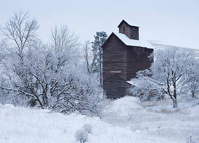 Winter Scenes Photograph - Frozen In Time by Darren  White