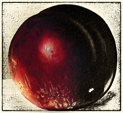 Fruit Painting Vintage Original by Art World