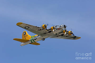 Planes Of Fame Photograph - Fuddy Duddy by John Daly