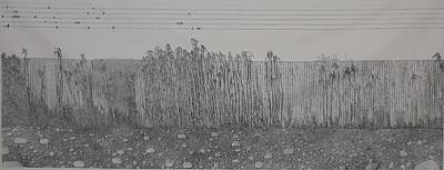 Bamboo Fence Drawing - Fugue by A  Robert Malcom