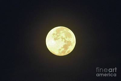 Waning Moon Photograph - Full Moon August 2014 by D Hackett