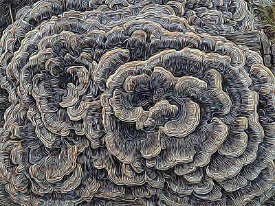 Fungal Digital Art - Fungalplasty 2 by Paul Gioacchini
