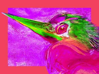 Anhinga Painting - Funky Anhinga Snake Bird Water Turkey Art Prints by Sue Jacobi