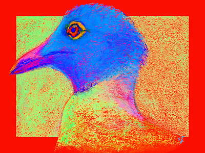 Multi Colored Painting - Funky Laughing Gull Bird 2 Art Prints by Sue Jacobi