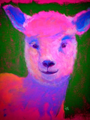Multi Colored Painting - Funky Pinky Lamb Art Print by Sue Jacobi