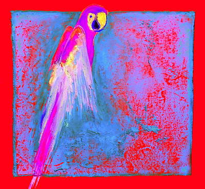 Yellow Beak Painting - Funky Rainbow Parrot Art Prints by Sue Jacobi