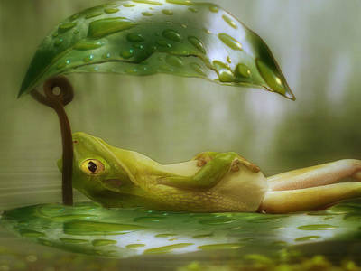 Lilies Digital Art - Funny Happy Frog by Jack Zulli