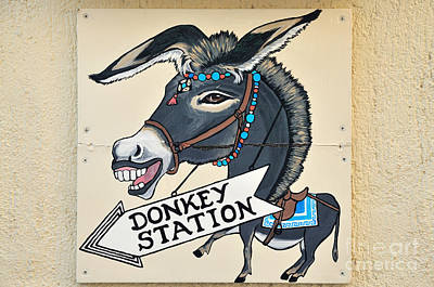 Donkeys Photograph - Funny Sign In Fira City by George Atsametakis