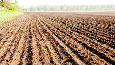 Plough Photograph - Furrows Freshly Ploughed Field by Wladimir Bulgar