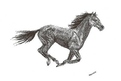 Pen Drawing - Galloping  by Mario Perez