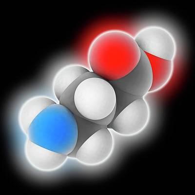 Gamma-aminobutyric Acid Molecule Print by Laguna Design