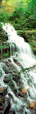 Pa State Parks Photograph - Ganoga Falls Ricketts Glenn State Park by Panoramic Images