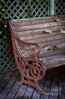 Empty Chairs Photograph - Garden Chair by Carlos Caetano