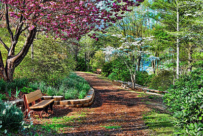 Dogwood Lake Photograph - Garden Of Serenity by Kenny Francis
