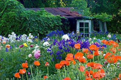 Adjectives Photograph - Garden Shed by Oscar Gutierrez