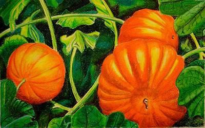 Holloween Drawing - Garden Treasure by Glen Sanders