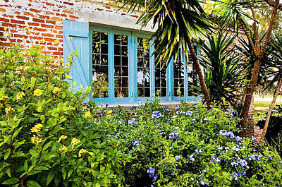 Garden Window Db Print by Rich Franco