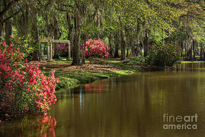 Gardens Of The South Print by Leslie Kirk