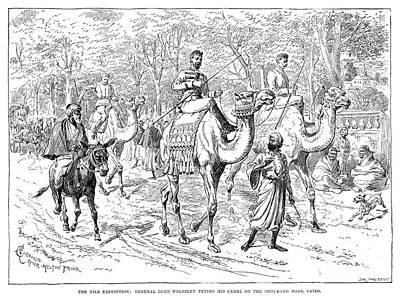 1884 Drawing - Garnet J. Wolseley  by Granger