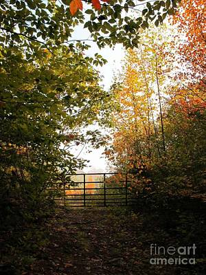 Photograph - Gateway by Linda Marcille