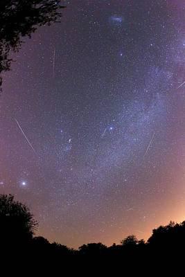Geminid Meteors Print by Luis Argerich