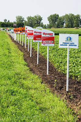 Modified Photograph - Genetically Modified Crop Signs by Jim West