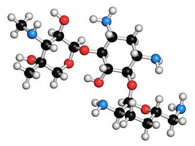 Chemical Photograph - Gentamicin Antibiotic Molecule by Molekuul