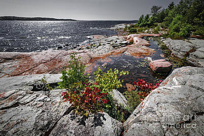 Parry Sound Photograph - Georgian Bay II by Elena Elisseeva