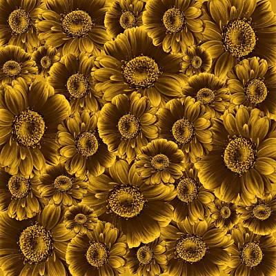 Gerbera Flowers Awash In Sepia   Print by David Dehner