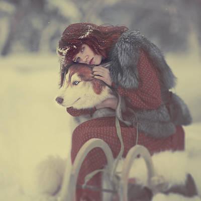 Husky Photograph - Gerda by Anka Zhuravleva