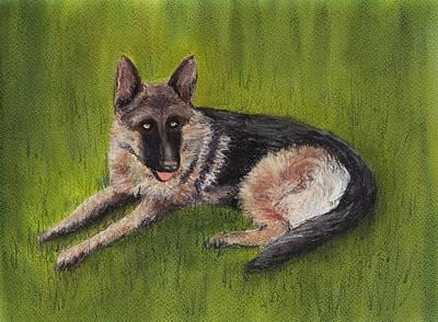 Herding Dog Painting - German Shepherd by Anastasiya Malakhova