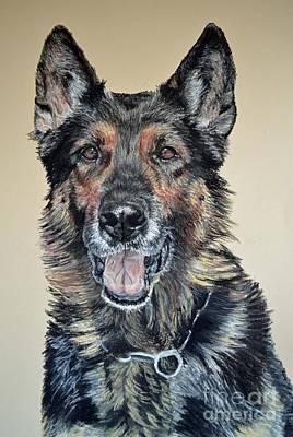 Portrait Pastel - German Shepherd Jim by Ann Marie Chaffin