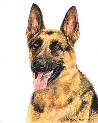 German Shepherd Painting Portrait  Print by Kate Sumners