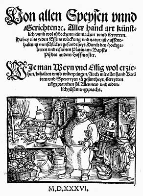 Cookbook Painting - Germany Cookbook, 1536 by Granger