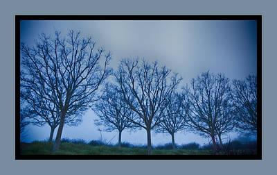 Getty Photograph - Getty Trees by Rosanne Nitti