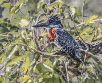 Kingfisher Digital Art - Giant Kingfisher by Liz Leyden