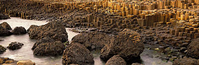 Columns Photograph - Giants Causeway, Antrim Coast, Northern by Panoramic Images