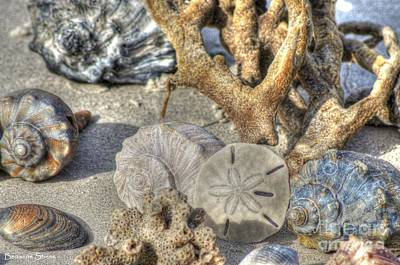 Gifts From The Sea Print by Benanne Stiens